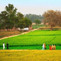 Punjab Tour (7 Nights/8 Days)