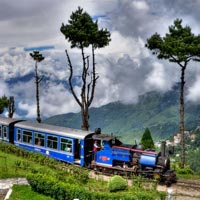 Darjeeling and Gangtok Tour 4N/5D