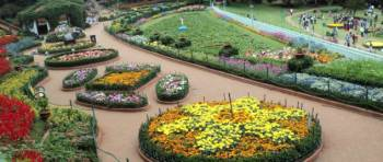 Ooty - Natural Splendours Tour - Coimbatore,Ooty,
