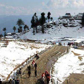 Honeymoon in Shimla, Manali & Chandigarh Tour