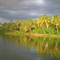 Cochin Munnar Tour