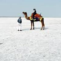 Discover Kutch Tour 3