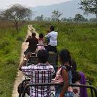 Discover Kaziranga, Manas. Nameri Tour