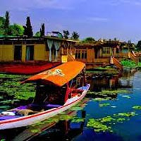 Srinagar Package Tour ( 04 Nights )
