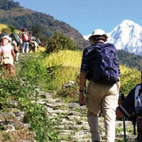 Trekking In Pahalgam (8 Nights / 9 Days) Tour