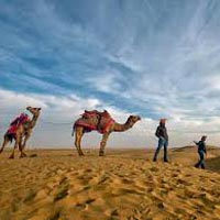 Wild Life with Golden Triangle Tour