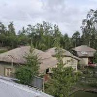Sundarbans Jungle Camp Tour