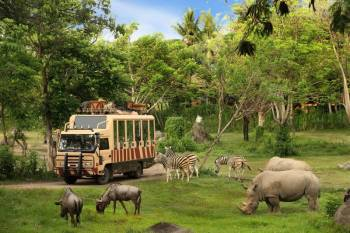 5 Nights with Indonesia & Bali Tour