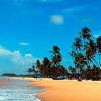 Escape To Goa (4N/5D) Tour