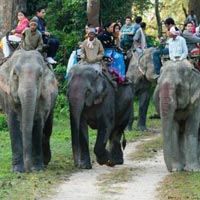 Namdapha National Park Tour