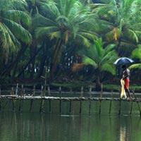 Kerala Memories Tour