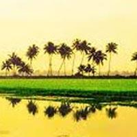 Delightfull Kerala Tour