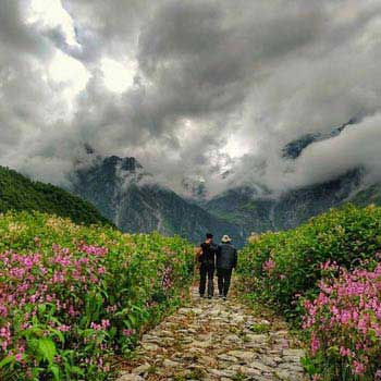 Himalayan Trails - Valley of Flowers Trek Tour