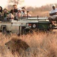 19 Days Uganda Kenya and Tanzania Safari Package