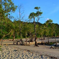 Group Andaman Island Tour