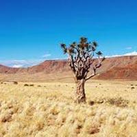 Namibia Southern Desert Tour