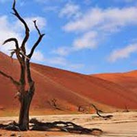 Namibia Discovery 10 Days/9 Nights Tour