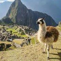Cusco And Puno Legacy Of The Inca - Peru Tour