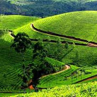 Kerala Tour (10 Days)