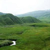 Trekking To Dzukou Valley Tour