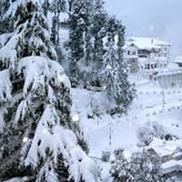 Tour to Himachal Package