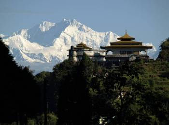 Darjeeling New Tour