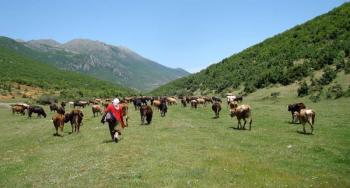 Grand Tour in Albania Package