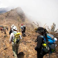 Mount Kilimanjaro-Lemosho Package