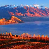 Exciting New Zealand Tour