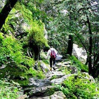 Tirthan Valley Trekking Tour