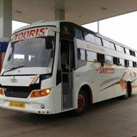 Diwali Nathdwara Ankut Tour