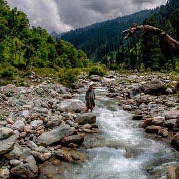 Dalhousie Manali Shimla 9 Days Package
