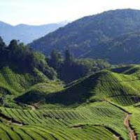 Awesome Tour Package For Gangtok