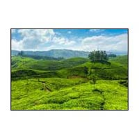 Kerala tour packages 3nights 4days