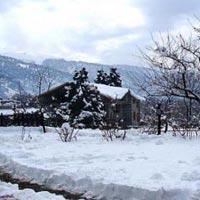 Himachal Package 4 Days : Shimla + Parwanoo