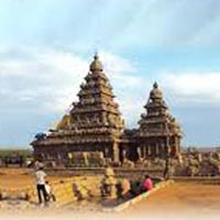 Exclusive South India Tour
