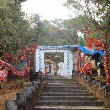 Dunagiri Temple Tour