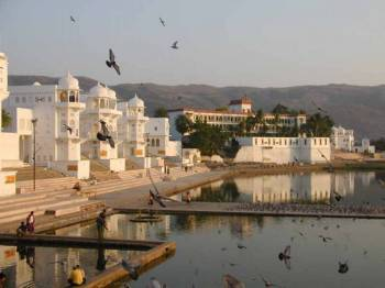 Rajasthan Splendor Tours