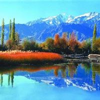 Delhi - Leh - Uleytokpo - Kargil - Srinagar Tour