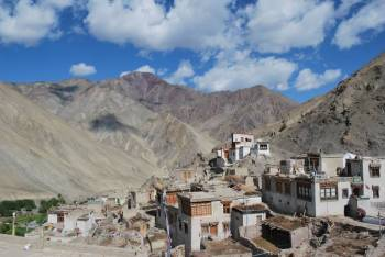 Ladakh Snow Leopard Expedition Tour