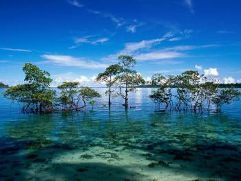 Andaman Port Blair Havlock Neil Island Tour Package