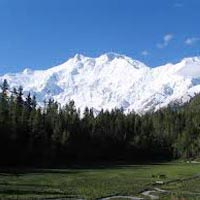 Love feel In Kashmir - Kashmir Tour