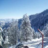 Sparkle Of Manali Trip Tour