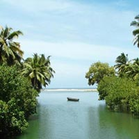 Rejuvenate With Ayurveda Programme In Kerala Tour