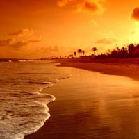 Goa Student Educational Group Tour Package