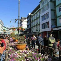 Splendour Himalaya (Gangtok 3N) Tour