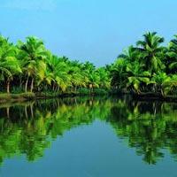 Mesmerizing Munnar, Cochin, Alleppey 4 Tour