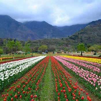 Magical Nature Kashmir Package