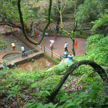 Amboli Water Fall Tour