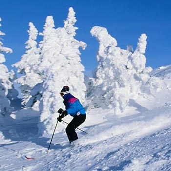 Glorious Shimla Manali Tour Package